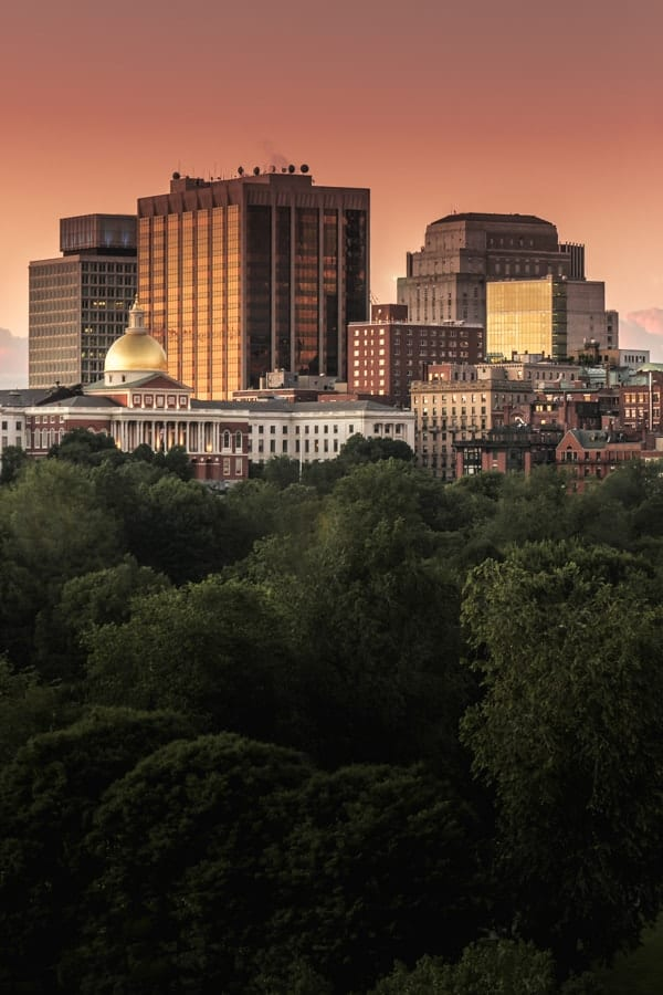 Boston Skyline - Urban - Sarah Kozak Photography-17-min