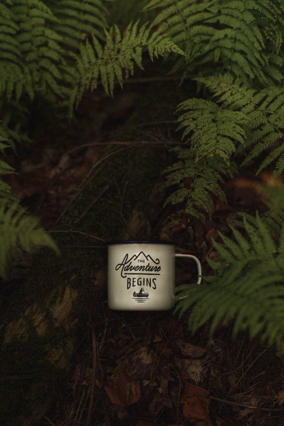 The Adventures Begins - Gentlemen's Hardware Mug in Ferns - Sarah Kozak Photography